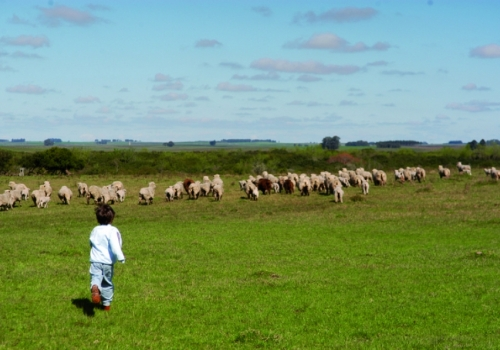 15 rural establishments recommended for family visits