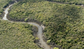 Montes del Queguay