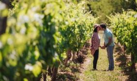 Festejar San Valentín entre viñedos y brindar con la bebida…