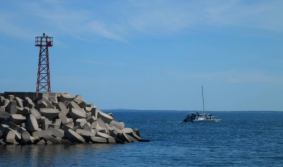 Embarcarse para ver ballenas
