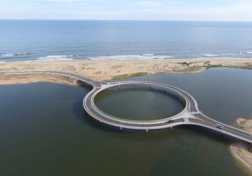 Diez propuestas para hacer en la Laguna de Rocha