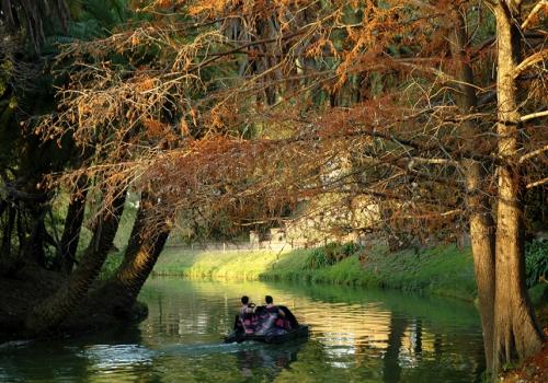 Cuatro propuestas para disfrutar del otoño en Montevideo