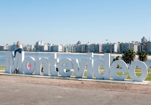 Montevideo panorámico y literario